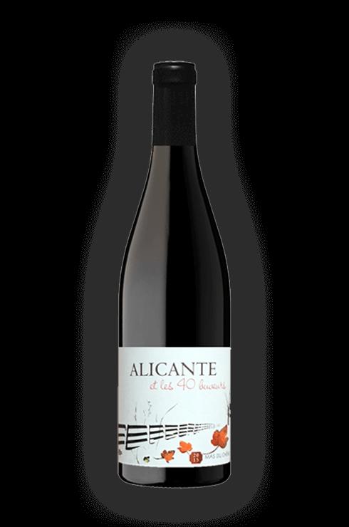 Mas-du-chene-Alicante