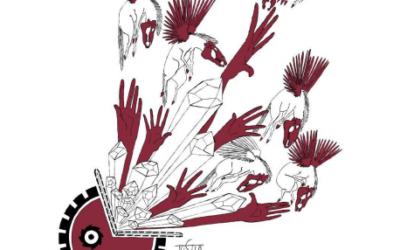 Dégustation Saumur Champigny – Clos Cristal – bio,  2015, rouge