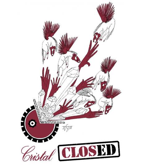 clos cristal saumur champigny 2015 julienvin.fr